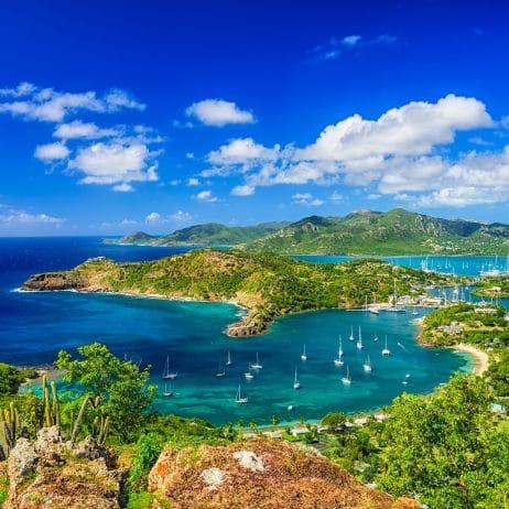 Antigua and Barbuda Authorised Representative