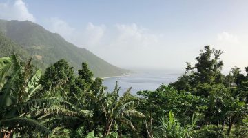 Jungle Bay Dominica Views